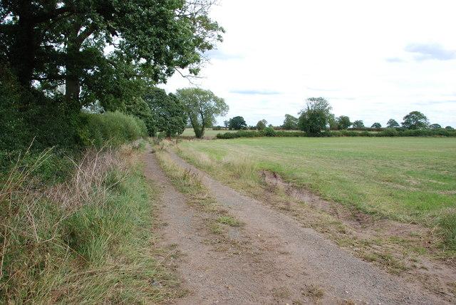 Farm Track into Fields
