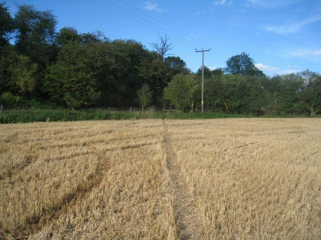 Path to field corner