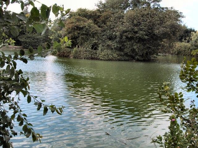 Lake -Singleton