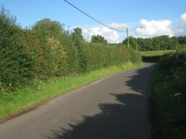 Lane east of Steventon