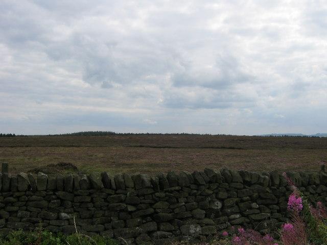Big Bumper Piece Moor