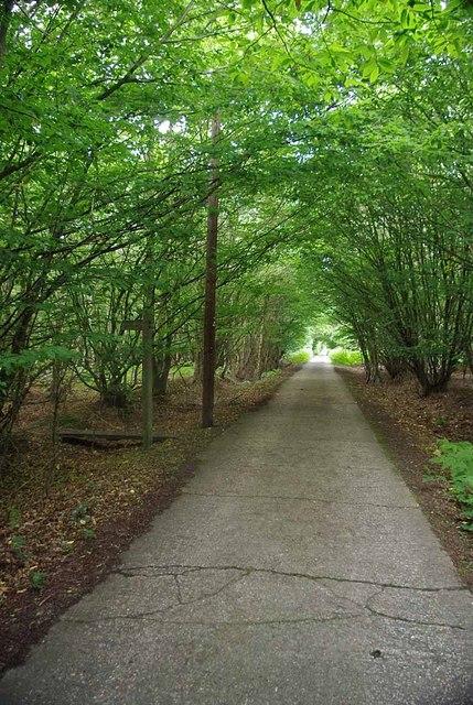 Old Barns Lane (Bridleway)
