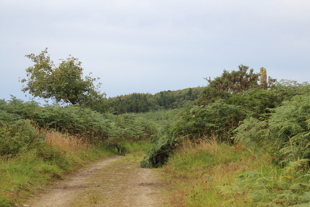 The old coach road from Lochgilphead