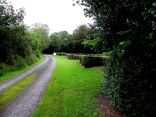 Lane, Castlewray