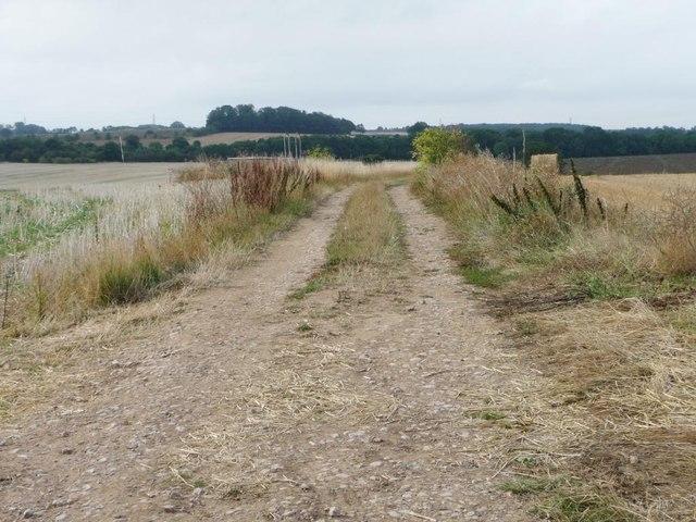 Track across Middle Field