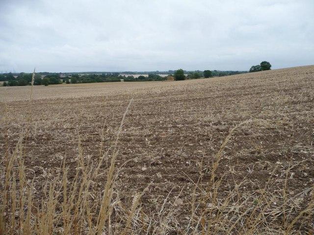 Stubble field, full of stones