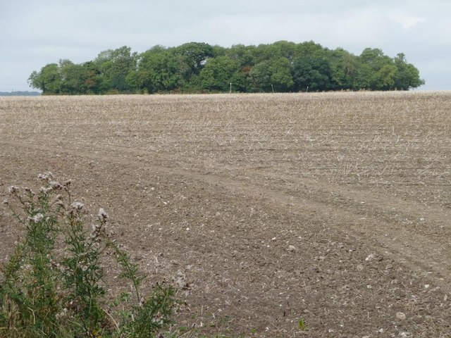 Southfield Plantation