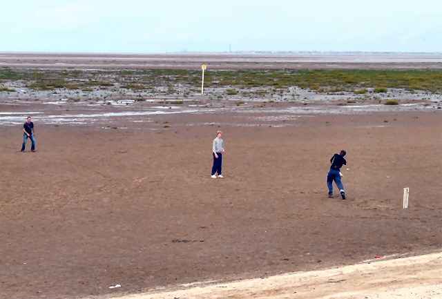 Cricket on Southport beach