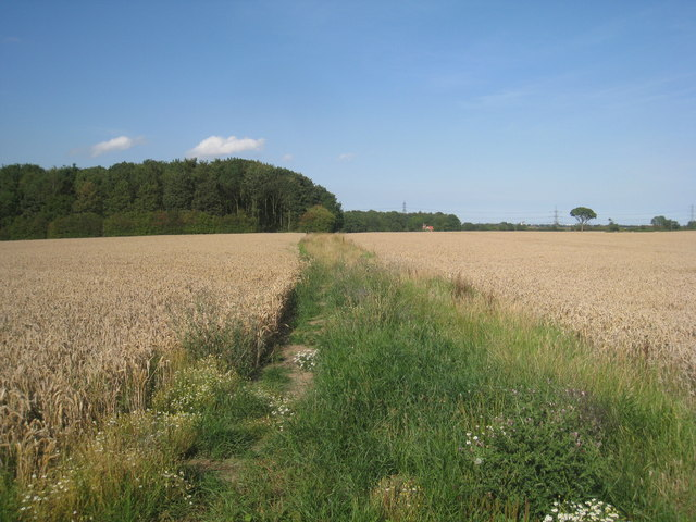 The bridleway to Habrough