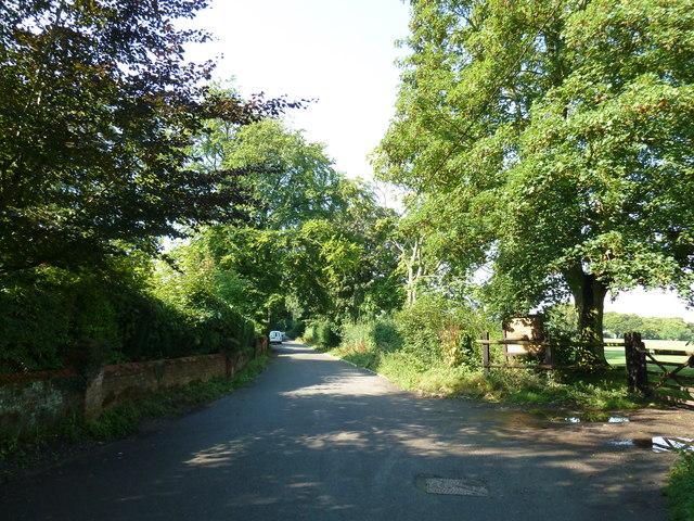 Lane passing Crondall Rec
