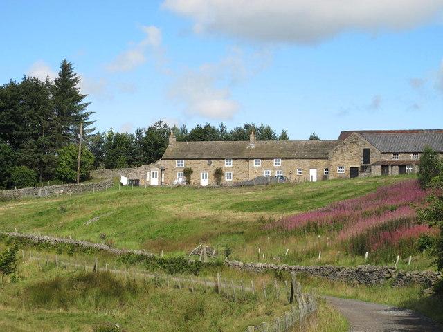 Pennypie House