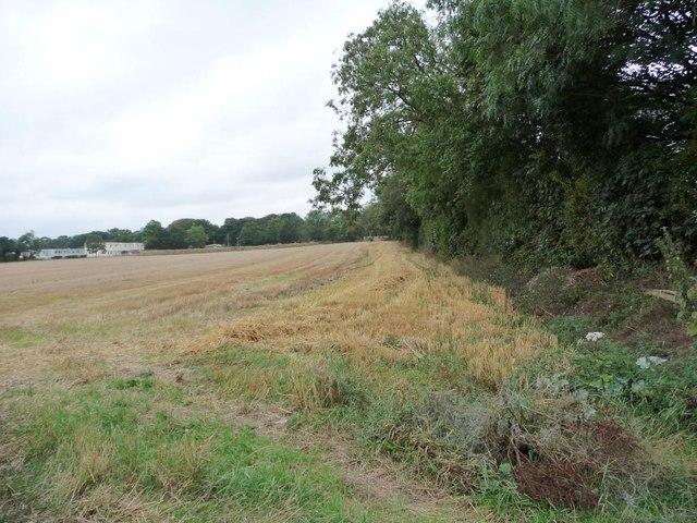 Corner of a field near Windmill Farm