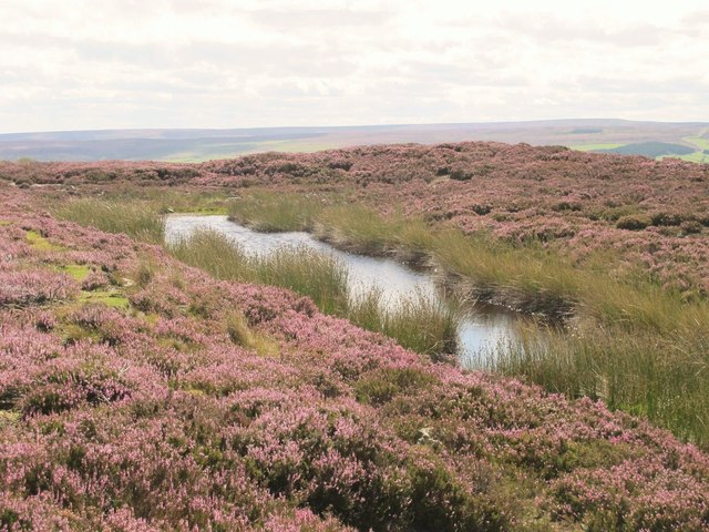 Small lough on Burntshieldhaugh Fell