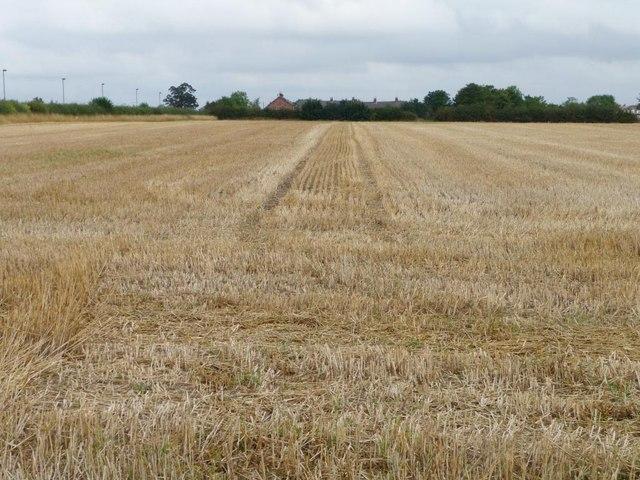Rye Croft Field [2]