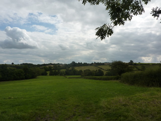 Farmland, Kniveton Lane