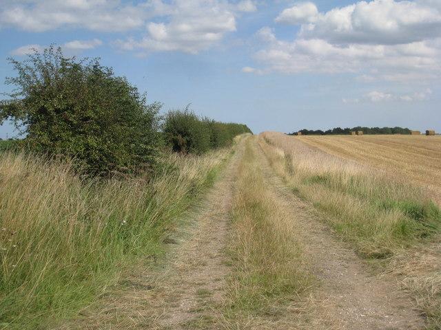 Farm track near Wootton