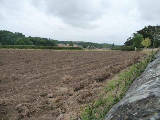 Corner of ploughed field