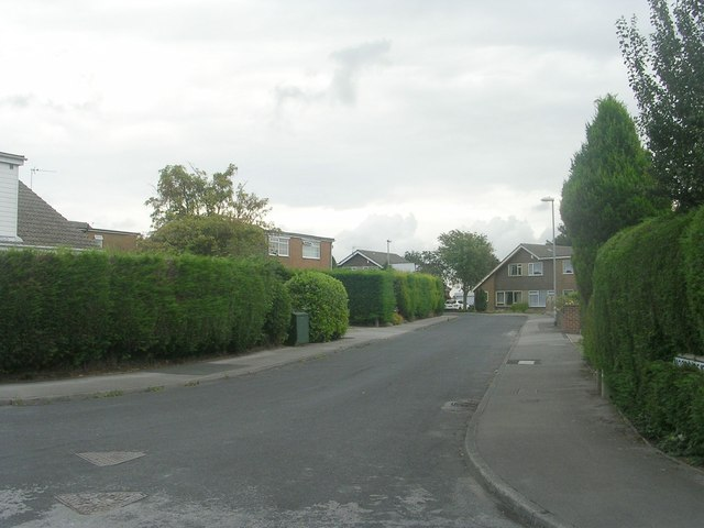 Moorside Crescent - viewed from Moorside Terrace