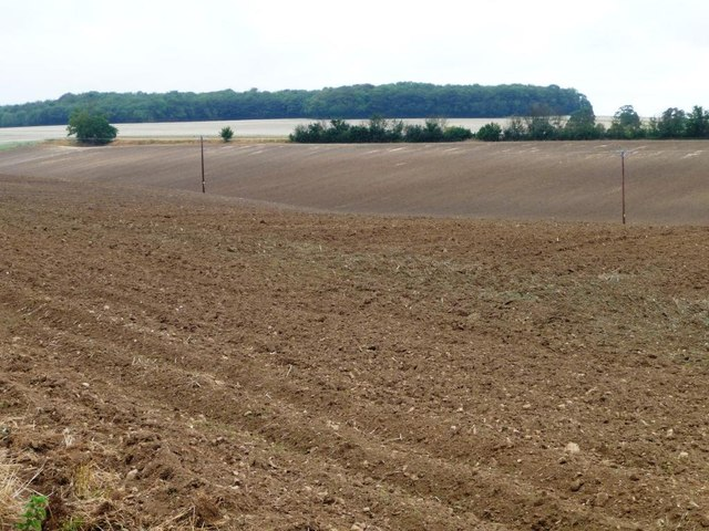 Small valley in a large field