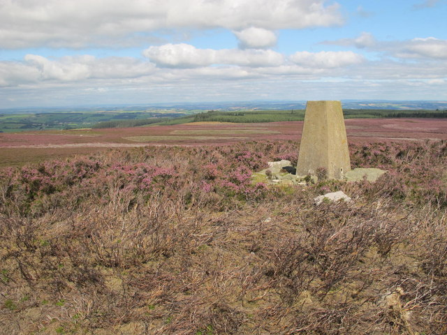 Trig point on Warlaw Pike