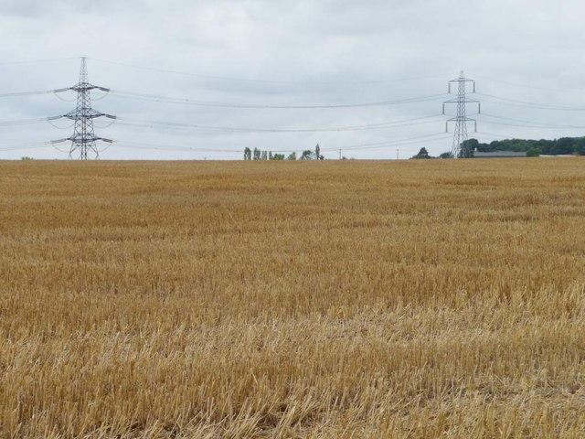 Pylons crossing Wood Field