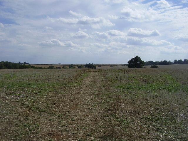 Holdenby Footpath