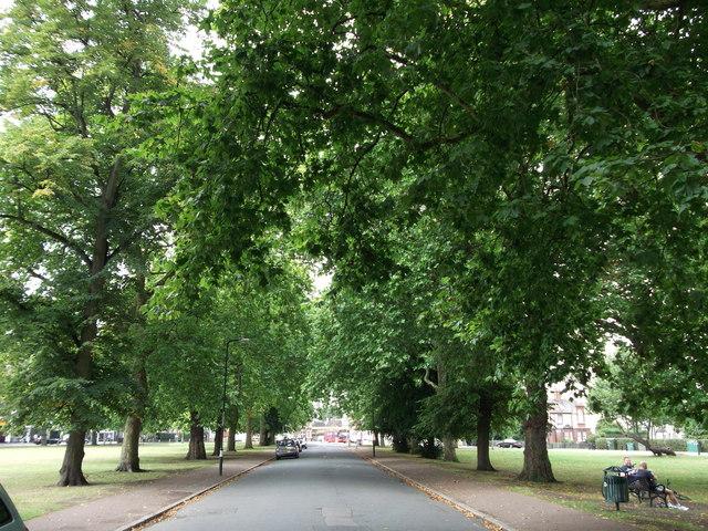 Waverley Crescent