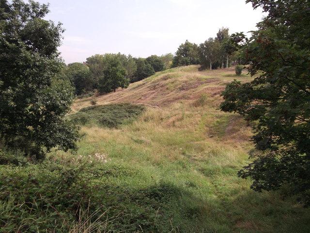 Wilder part of Plumstead Common