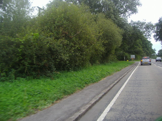 The A286 approaching Cocking