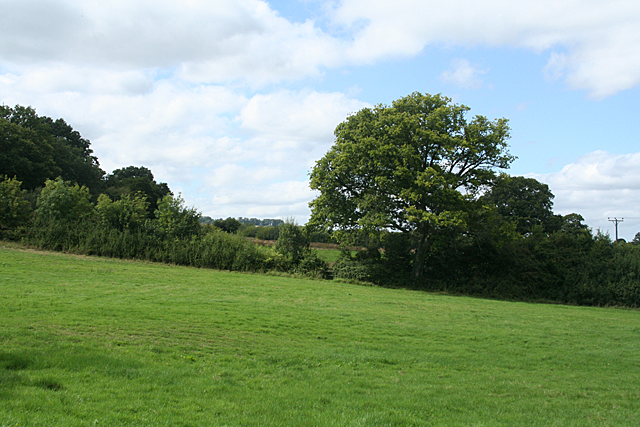 Chard: site of Chard Common Incline