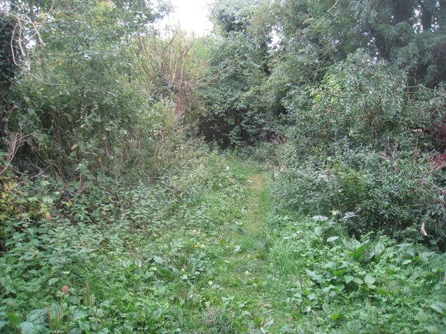Footpath to Ulceby church