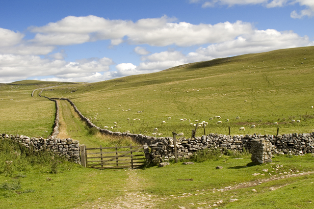 Mastiles Gate and Lane