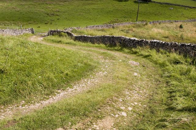 Track to Hetton from Bordley