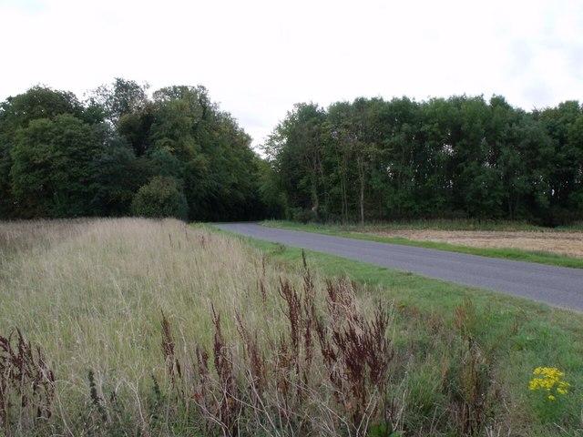 Park Lane runs through Evedon Wood