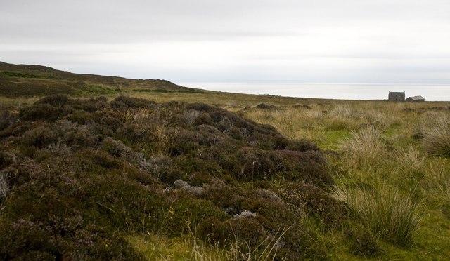 Moorland near Stremnishmore, Islay