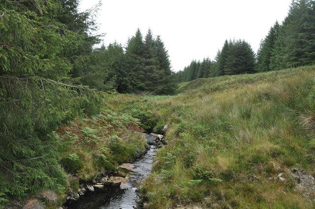 Allt na Dunaich, in the forest, Kintyre