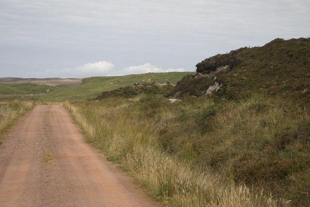 Track to Ballychatrigan, Islay