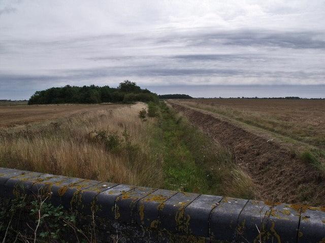 Catchwater Drain, Ewerby Fen