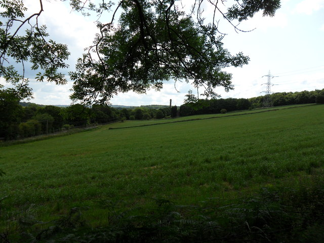 Greenfields just north of Bradley Estate