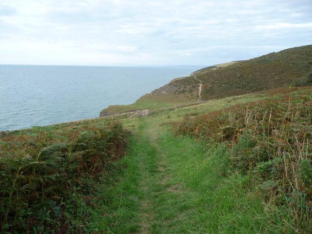 Kissing gate on the Ceredigion Coast Path at Cwm Drywi