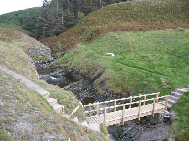 Wooden footbridge on the Afon Drywi