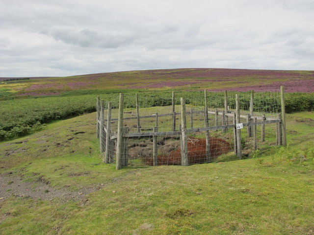 Disused mine shaft on Pennypie Fell