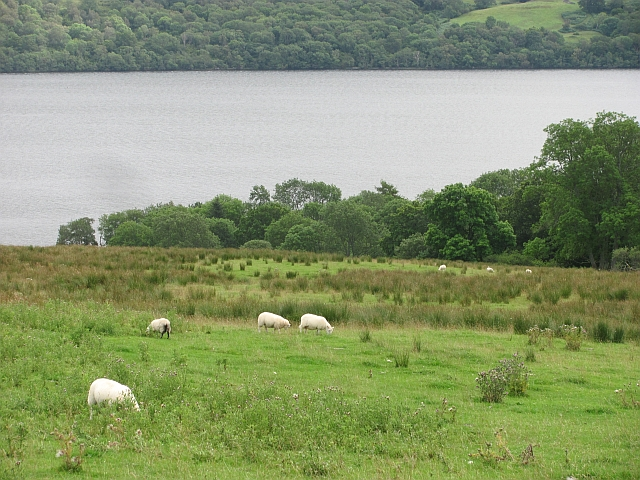Fields above Loch Tay