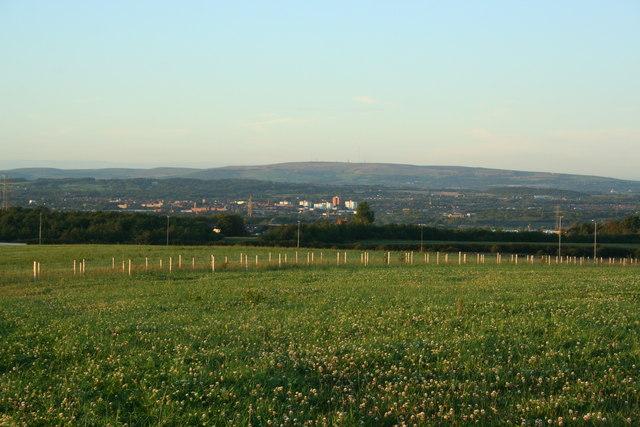 New green fields