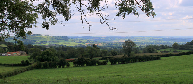 2011 : South from Winterwell Lane