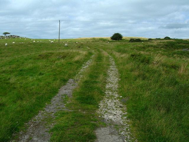 Track to Newbiggin Crags