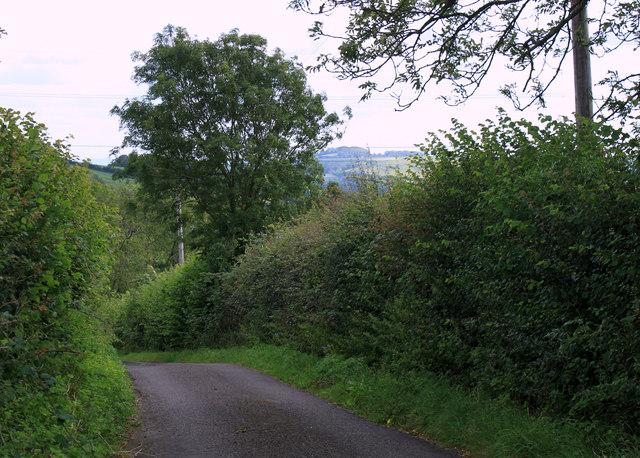 2011 : Winterwell Lane near Winterwell Farm