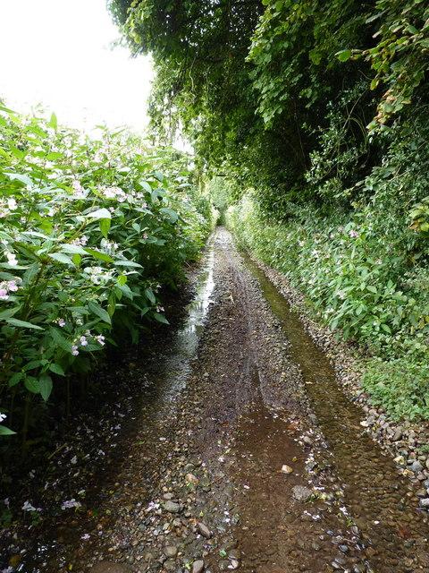 Bennetts Lane, Great Moor