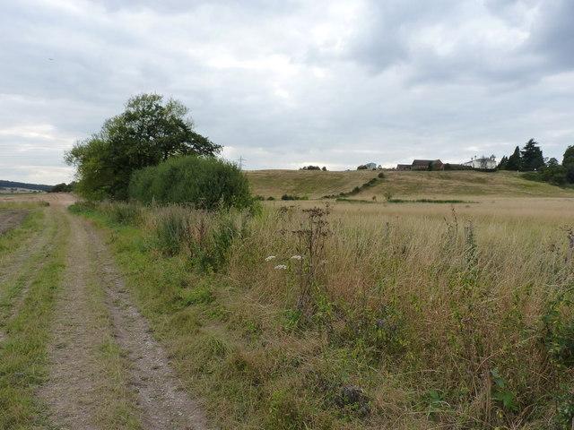 Bridleway below Little Moor