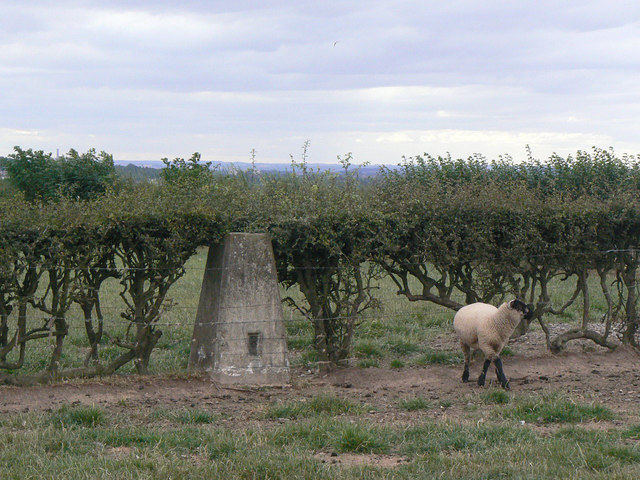 Arnold Lodge trig point